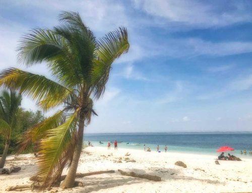 relax, snorkel & explore isla iguana