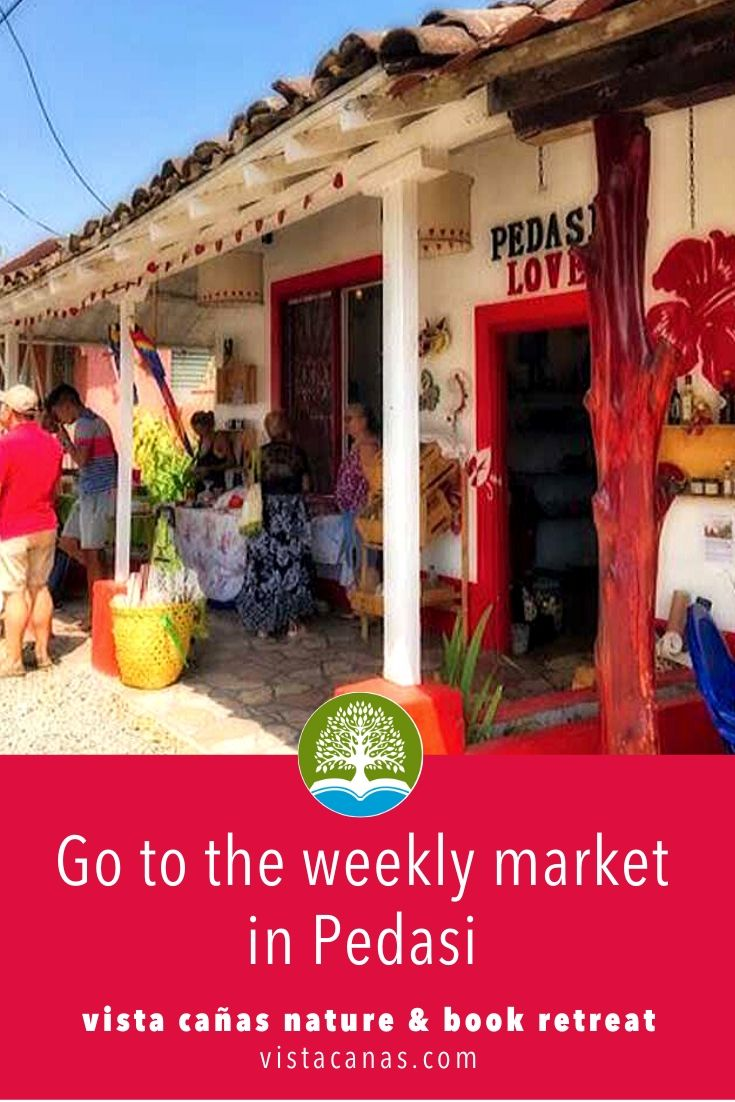 THINGS TO DO IN PANAMA: Shop at the weekly Pedasi market | VISTACANAS.COM