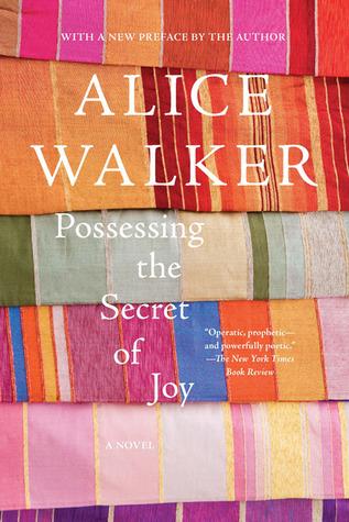 Possessing the Secret of Joy by Alice Walker | VISTACANAS.COM
