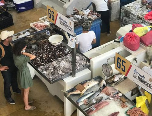 visit the fish market in panama city