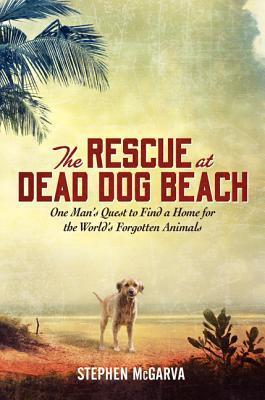 The Rescue at Dead Dog Beach by Stephen McGarva | VISTACANAS.COM